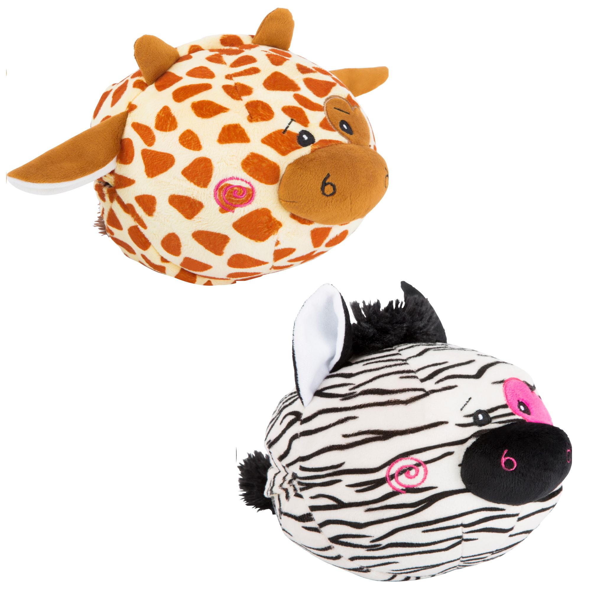 žirafa in zebra
