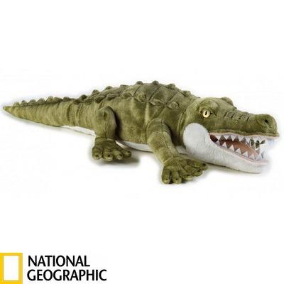 Krokodil_resize_1